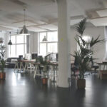Open office space with potted plants